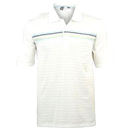 Купить Ashworth Stripy Polo Shirt Mens 2450.00 за рублей
