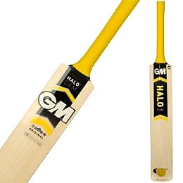 Купить Gunn And Moore Halo DXM Original Cricket Bat 16100.00 за рублей